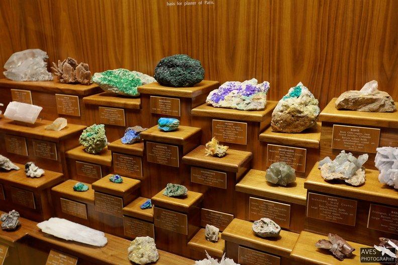 Denver_Science_Museum-07-09-2019-011.jpg