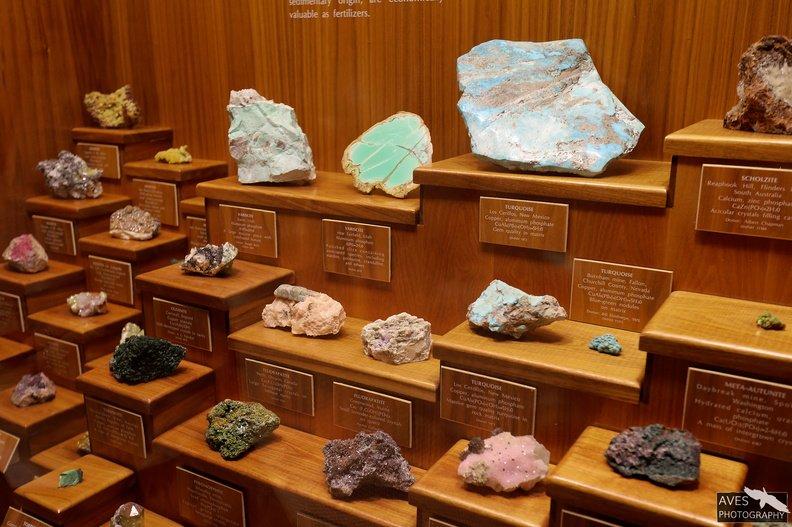 Denver_Science_Museum-07-09-2019-012.jpg