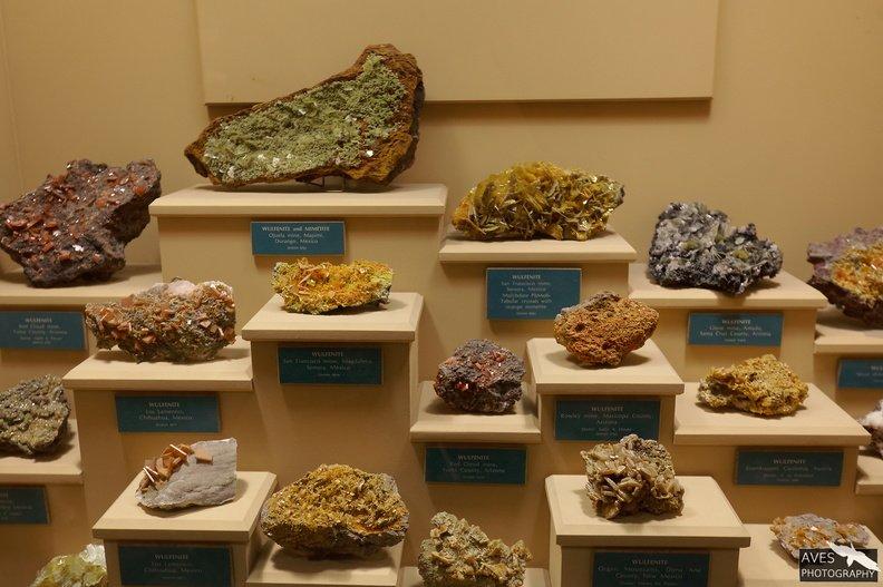 Denver_Science_Museum-07-09-2019-013.jpg