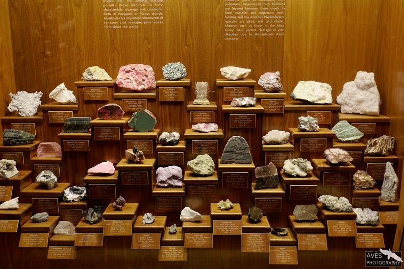 Denver_Science_Museum-07-09-2019-016.jpg