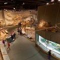 Denver Science Museum-07-09-2019-062