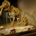 Denver Science Museum-07-09-2019-085