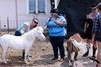 Free Spirit Farm-07-15-2020-023