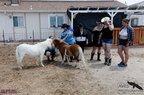 Free Spirit Farm-07-15-2020-024