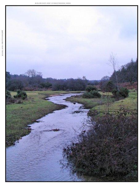 ringwood-hampshire-157.jpg