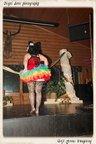 Scarlet Ranch-03-08-2014-259